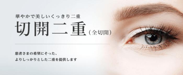 東京美容外科切開法
